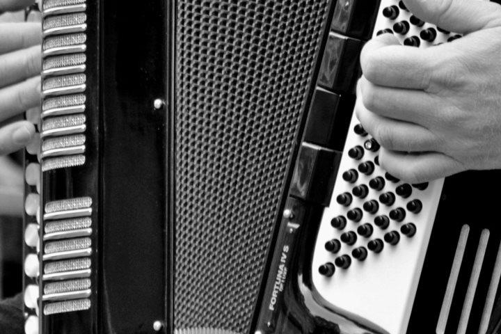 aulas musica online acordeao