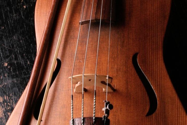 aulas musica online violino